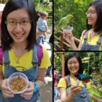 Jalan-Jalan Terus: Jurong Bird Park Singapura