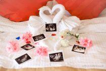 Pregnancy Journey: Maternity Photoshoot (33 Minggu)